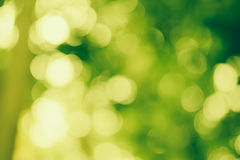 Brilho verde do bokeh Foto de Stock Royalty Free