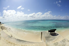 briljant karibiskt förbiser havsplatsgnäggandet Arkivfoton