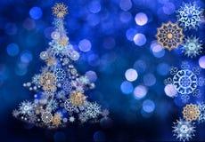 briljant snowflakes Royaltyfria Foton