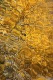 Or brillant et modèle liquide brun Photo stock