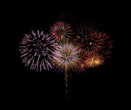 Brillant fireworks. Colorful fireworks against a black sky background Stock Images