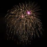Brillantemente fuegos artificiales hermosos de oro púrpuras Foto de archivo