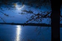 Brille las lunas sobre la superficie en la noche, un árbol oscuro del ` s del lago Imagen de archivo libre de regalías