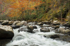 Brilliant autumn colors, rushing stream. Royalty Free Stock Photo