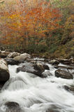 Brilliant autumn colors, rushing stream. Stock Photo