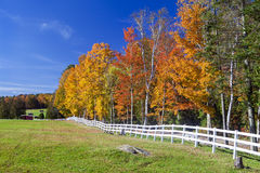 Brilliant Autumn Foliage With White Fence And Farm Fields Royalty Free Stock Photo