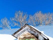 Tin roof below deep blue sky Stock Photography