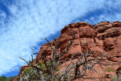 Brilliant blue sky and red cliffs of Sedona, Arizo. This photograph was taken in June 2012 while hiking in the desert hills near Sedona, Arizona Stock Images