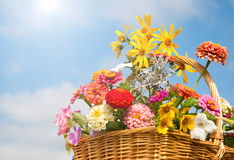 Brilliant, colorful flowers in a wicker basket Stock Photos