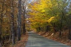 Autumn foliage light up the backroads of Vermont. stock photo