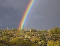 Brilliant Colored Desert Rainbow Near Scottsdale,AZ. Huge and vivid colored Sonoran desert rainbow near North Scottsdale, Arizona stock photography