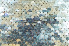 Brilliant fish scales shimmers in different colors of blue silver. White royalty free stock photos