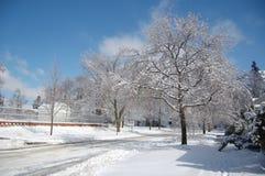 Ice Storm Stock Photo
