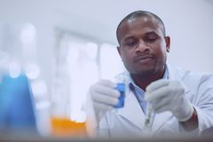 Brilliant male scientist doing a new test. Interesting task. Delighted afro-american scientist doing a test while working in the lab Stock Images