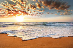 Brilliant ocean beach sunrise. Stock Photos