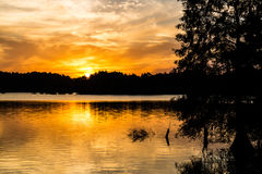Free Brilliant Orange Sun At Dusk At Stumpy Lake Stock Photos - 82603783