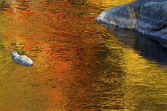 Brilliant reflections of vibrant colors in fall foliage, Canton, Connecticut. Brilliant palette of fall foliage reflections among boulders in the waters of the royalty free stock image