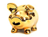 Brilliant shining golden piggy bank Stock Photography