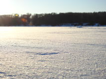 Brilliant snow. Brilliant, smooth snow on the lake Stock Images