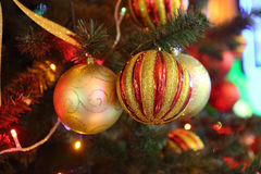 Brilliant spheres on a New Year tree Stock Image
