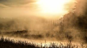Brilliant sunrise on foggy, misty marsh wetland on a summer morning. Brilliant sunrise on a marsh.  foggy mist summer morning on the narrow end of a small lake Royalty Free Stock Photos