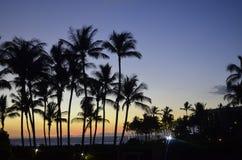 Brilliant Tropical Sunset Stock Photos