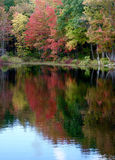 Brilliantly colorful autumn leaves reflected in a lake Stock Photo