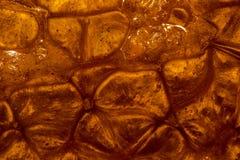 Brillo anaranjado 1 imagenes de archivo