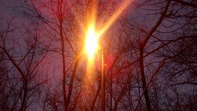 Brillo de la lámpara de calle Imagen de archivo libre de regalías