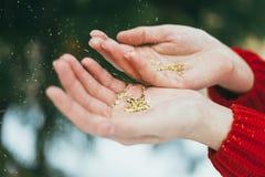 Brillo de oro en manos Imagen de archivo