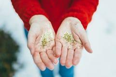 Brillo de oro en manos Foto de archivo libre de regalías