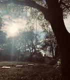 brillo del sol fotos de archivo