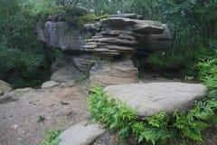 Brimham岩层 库存照片