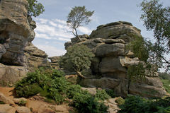 Brimham Rocks Yorkshire. Brimham rocks, a sedimentary rock formation in Nidderdale, Yorkshire, England Stock Images