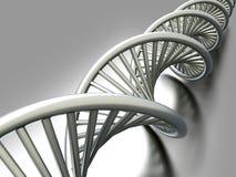 Brin d'ADN Image libre de droits