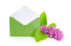 Brin de lilas fleurissant Photo libre de droits