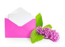 Brin de lilas fleurissant Image stock