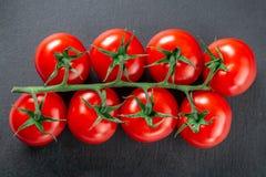 Brin de tomate sur une vue supérieure d'ardoise photos stock