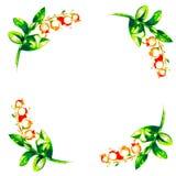 Brin des baies et des fleurs illustration de vecteur