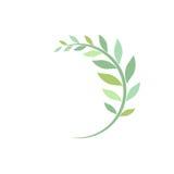 Brin incurvé par vert d'isolement sur le blanc Image libre de droits