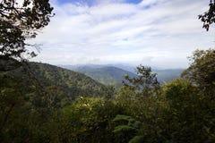 Brinchang Mountain Malaysia Stock Photo