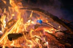 Brindando um marshmallow em uma vara sobre um po?o do fogo na noite fora Atividade de acampamento na natureza, relaxando com amig imagem de stock royalty free