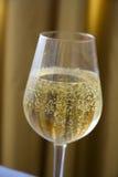 Brinde de Champagne Fotos de Stock