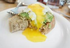 Brinde do abacate com ovos fotos de stock royalty free