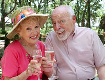 Brinde feliz dos séniores Fotografia de Stock Royalty Free
