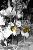 Brinde para dois Imagem de Stock