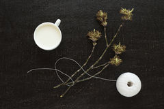 Brindille de floraison, lait et un écheveau de coton Photographie stock libre de droits