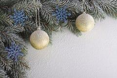 Brindille de Noël Photographie stock libre de droits
