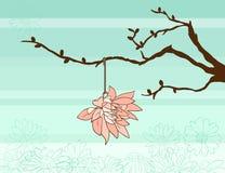 Brindille et fleur de ressort Photographie stock libre de droits