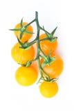 Brindille jaune de tomates-cerises sur le blanc Photographie stock